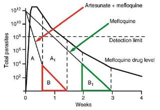 Artemisinin combination therapy (ACT)