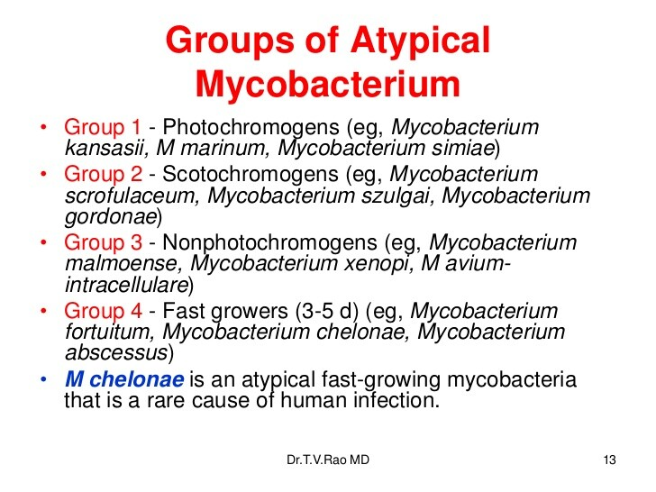 Atypical mycobacterium