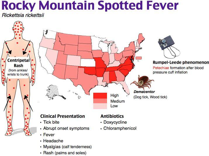 Rocky mountain spotted fever backpacking