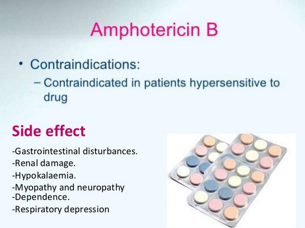 Amphotericin B: Cautions