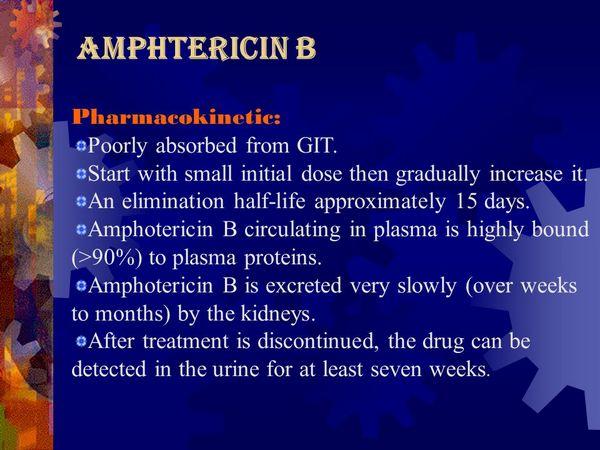 Amphotericin B (Fungilin, Fungizone, Abelcet, Fungisome, Amphocil)