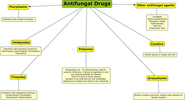 Antifungal Drugs