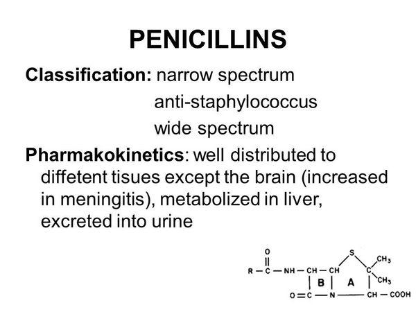 Penicillins Liver