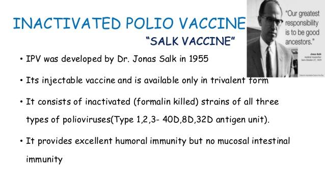 Poliovirus vaccines