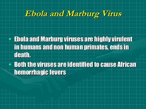 Marburg & Ebola Virus