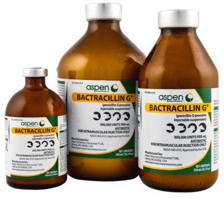 Penicillin G Procaine