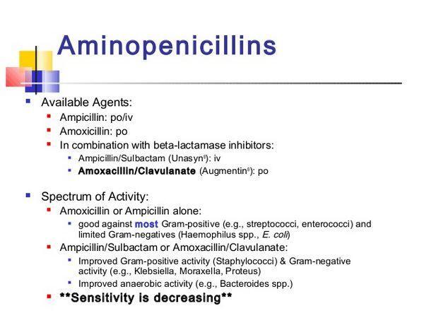 Amino-penicillins